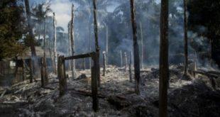 صور الأقمار الاصطناعية تكشف تدمير نحو ألف منزل لمسلمي الروهينغا