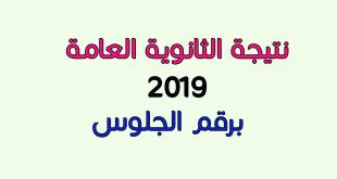 نتيجة الثانوية العامة 2019 بالإسم و رقم الجلوس اليوم السابع بوابة الثانوية العامة